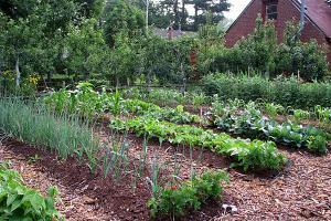 0418-gardening_full_600